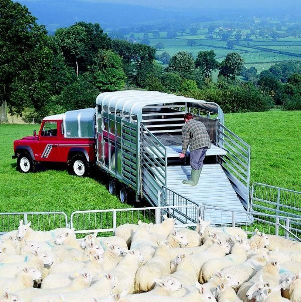 ρυμουλκούμενο όχημα μεταφοράς ζώων IFOR Williams TA510